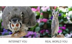 ネット上では勢いあるけど実際こうだろ?インターネットのおまえらとリアルのおまえらを比較した画像まとめ