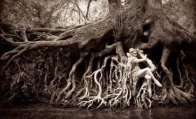 自然と人類を一体化させた特異なファンタジーを演出したフォトプロジェクト「ワンダーランド」