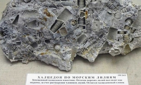 【マジかよ】超古代文明か?3億年前の「ボルト」が発見される!