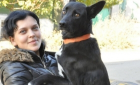 どうしても会いたい!自分を助けてくれた元保護者に会いたくて2週間かけて300キロの道のりを歩き続けた犬(ロシア)