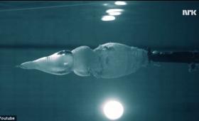 ギリギリどっちだ!?物理学者が体を張って挑む、水中で自らの体に向けて発砲実験