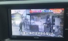 【悲報】名古屋の「ハト男」の取材があまりにシュールだと話題に