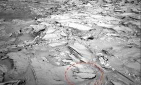 【火星ヤバい】エイリアンハンター「サメの化石」を発見!これは期待できる!