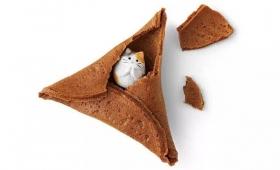 【可愛すぎ】フォーチュンクッキーの中に「ネコ」が隠れているクッキーが話題に