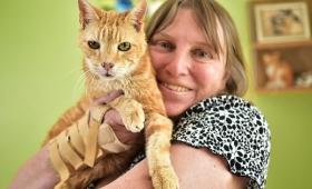 【ウソだろ!】なんと30歳のネコが発見される!人間で言えば136歳!常識覆す!