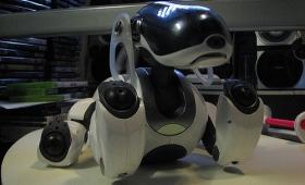 まさかのAIBO復活?ソニー、10年ぶりにロボット事業を再開