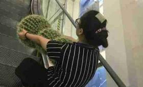 【怪奇過ぎ】中国で「巨大サボテン」を素手で運ぶ謎の女が発見される