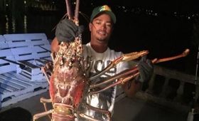 【衝撃サイズ】バミューダ沖で「怪物エビ」捕獲される!6.3キロというモンスターサイズ