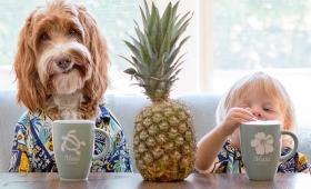【すげえ癒される!!】3歳の少年と犬がベストフレンドすぎると世界中で話題に!!