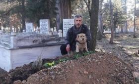 主人が亡きあとも墓守りとしてその棺を守り続ける犬(トルコ)
