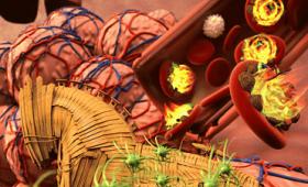 WHO(世界保健機関)が抗生物質の効かない最も危険な12種類のスーパーバグリストを発表