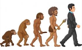節子、それ科学やない…! 進化論がトルコの教科書から外されることに