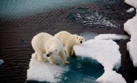地球温暖化は人為的なものではなく自然現象とする説(オーストラリア)