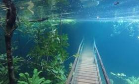 透明すぎて水中都市。ブラジル最高純度を誇るラプラタ川が増水、木々や橋を飲み込んだ時の映像