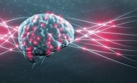 脳を保存して意識をコンピューターにアップロード。電脳化の為の脳保管プロジェクトが開始される。ただし100%致死的