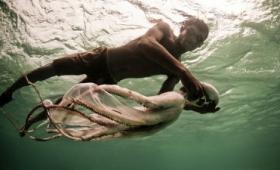 海の遊牧民「バジャウ族」が長時間水中で活動できる理由とは?