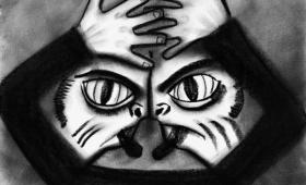 エロトマニア、カプグラ症候群、コタール症候群など、10の稀な心理学的妄想