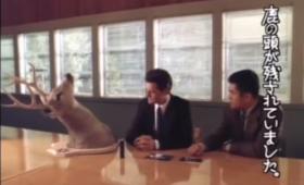 デヴィッド・リンチが手掛けたテレビCMを1つの動画にまとめてみた