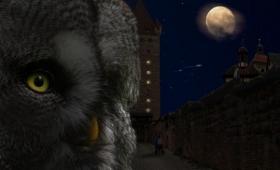 満月の夜に犯罪が増えるのは本当なのか?犯罪学者が考察した「満月と犯罪」の関係性