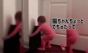 猫と子供のドリームチーム結成!ニャイスコンビネーションでドアを開けることに成功!