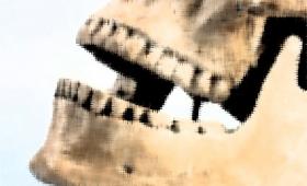 中世ドイツ女性の遺骨の歯に付着していたラピスラズリ。当時女性がアーティストとして活動していた証拠