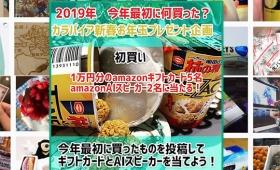 2019年カラパイアお年玉プレゼント企画「今年最初に何買った?」当選者発表!