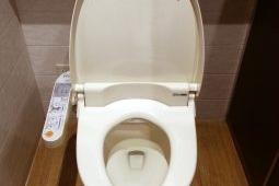 美女が「トイレの便器」をベロベロ舐める動画が640万回再生の大反響!
