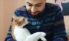 そこにはたくさんの物語と愛があった。トルコ人ピアニストのサーパーさんと愛猫たちの軌跡
