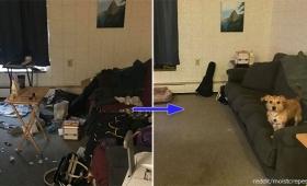 うつ病とたたかう人々が、最初の一歩として自分の部屋を片付けてみた。部屋のビフォー&アフターとたたかいの記録をシェア