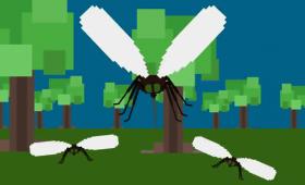 蚊を絶滅させるのに最適な方法とは?