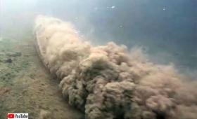 海底でトルネード旋風を巻き起こす!全長7メートル、巨大アナコンダ様のお通りでぃ!(ブラジル)※ヘビ出演中