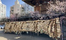 合格祈願で有名な東大のお膝元『湯島天満宮』の梅を見に行ったら意外な物を見つけた